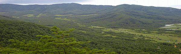 samibiyamakara-600-180-7